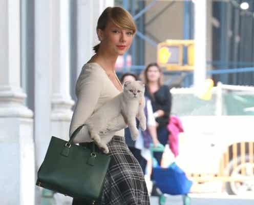 テイラー・スウィフト、猫のオリヴィアとお出かけ