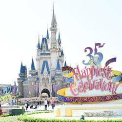 デコレーション/東京ディズニーランド(C)モデルプレス(C)Disney