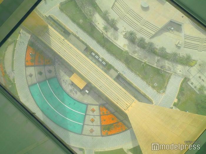 展望台のガラスの床から見下ろす景色(C)モデルプレス