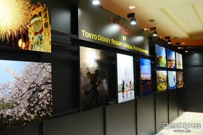 フォトグラファーによるパークの風景などを集めた写真展