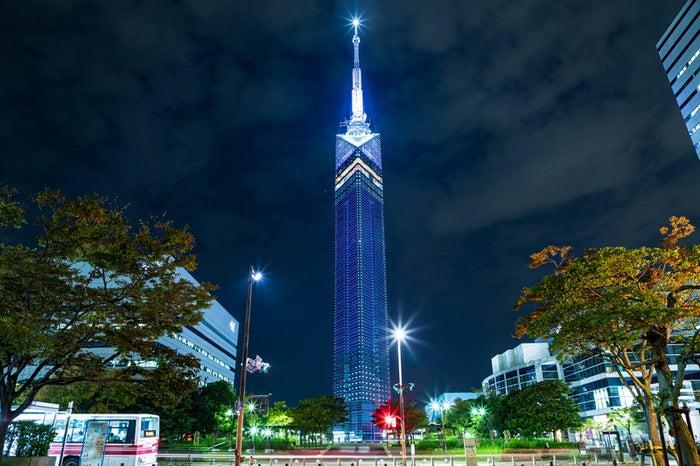 福岡タワー/photo by ぱくたそ