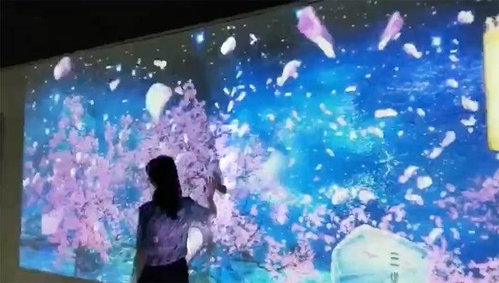 ひたすら可愛いミュージアム/画像提供:FND