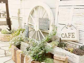 洋風のおしゃれなお庭デザイン15選。憧れのガーデニングの参考になる素敵な実例集