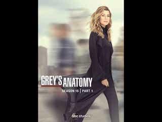 全米医療ドラマ史上最長『グレイズ・アナトミー』シーズン16がDVDリリース!