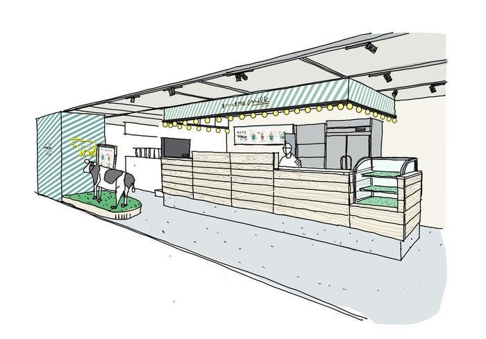 生クリーム専門店 ミルク なんばCITY店/画像提供:オペレーションファクトリー