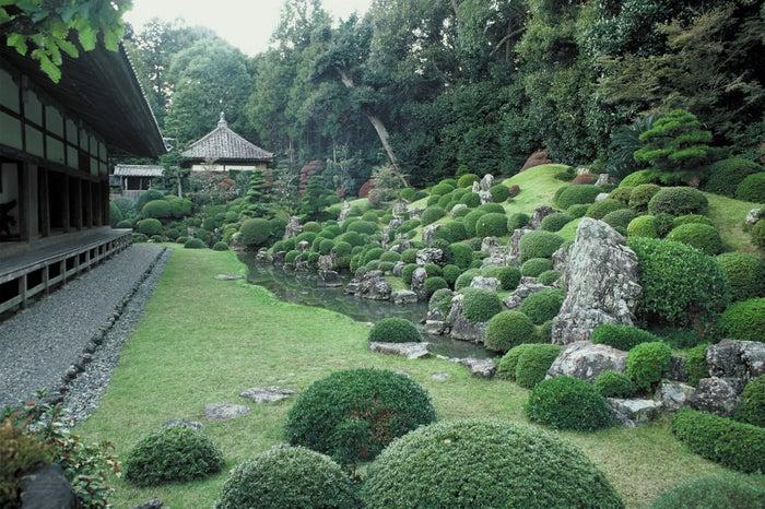 龍潭寺庭園/写真提供:静岡県観光協会
