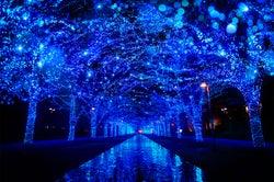 「青の洞窟SHIBUYA」2018年も開催決定 大晦日はオールナイト点灯