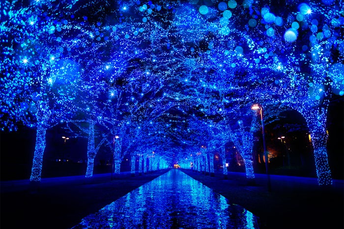 青の洞窟 SHIBUYA/画像提供:日清フーズ