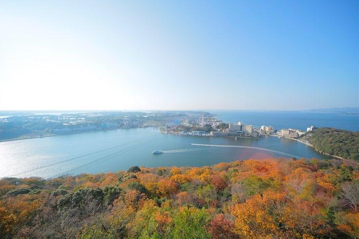 浜松観光おすすめスポット10選 レジャー、グルメ、歴史まで魅力たっぷり!/大草山(紅葉)/写真提供:浜松観光コンベンションビューロー