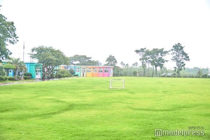 芝生の青と、校舎の七色、雨の日のしっとり落ち着いた風景もすてき(C)モデルプレス
