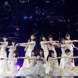乃木坂46/提供画像