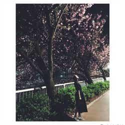 モデルプレス - 武井咲、夜桜ショットにファン歓喜「撮影者は旦那さん?」の声続出