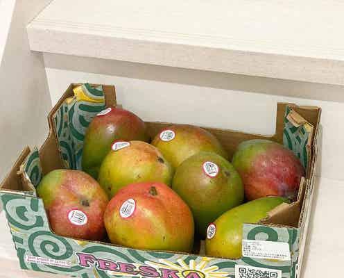夏バテ回避♡【コストコ】今の時期「フルーツ系」がほんとに美味しい!