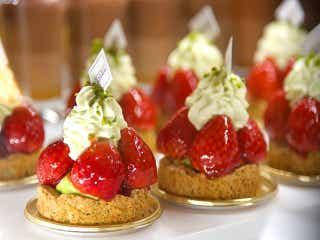 日本初上陸! パリ発・世界中の美食家が愛する名パティスリー『アルノー・ラエール』が広尾にオープン