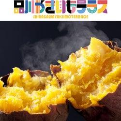 「品川やきいもテラス2020」開催、ねっとり甘い蜜芋や紫芋&やきいもグルメ100品種超が登場