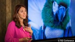 動物も心の病が…ローレル・ブレイトマン博士のプレゼンから学ぶこと