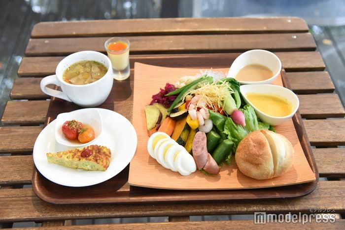 朝どれ野菜のサラダプレート(税込1080円)(C)モデルプレス