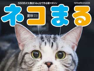"""前田敦子の愛猫""""ポッツちゃん""""効果で雑誌バカ売れ「売り切れ寸前になりました」と喜びの声"""