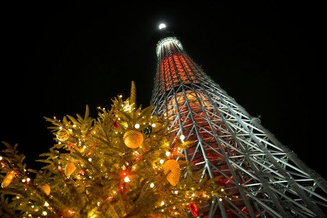 イルミネーションイメージ(C)TOKYO-SKYTREETOWN
