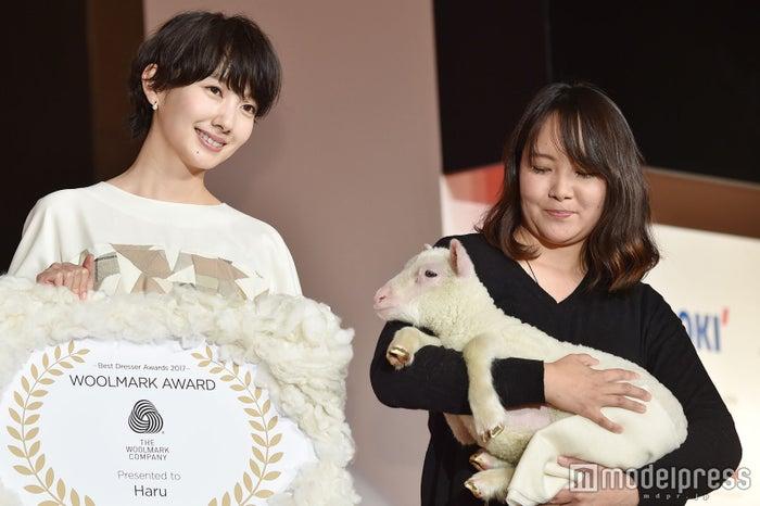 波瑠の受賞を羊さんもお祝い (C)モデルプレス