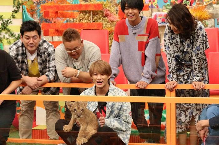 (左から)富澤たけし、伊達みきお、平野紫耀、高橋海人、片平なぎさ(C)フジテレビ
