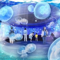 新展示エリア(イメージ)/画像提供:京都水族館