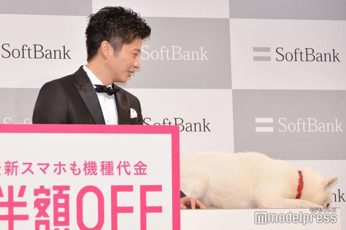飽きてしまった白戸家のお父さんを見つめる田中圭(C)モデルプレス