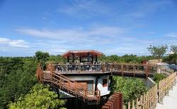 バリ・アヤナに森の絶景レストラン「フォレストバー」 大自然の魅力を最大限に満喫
