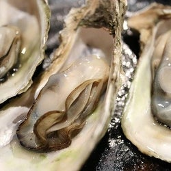 【牡蠣の正しい保存方法】プリプリ食感キープのコツは解凍方法にあり!