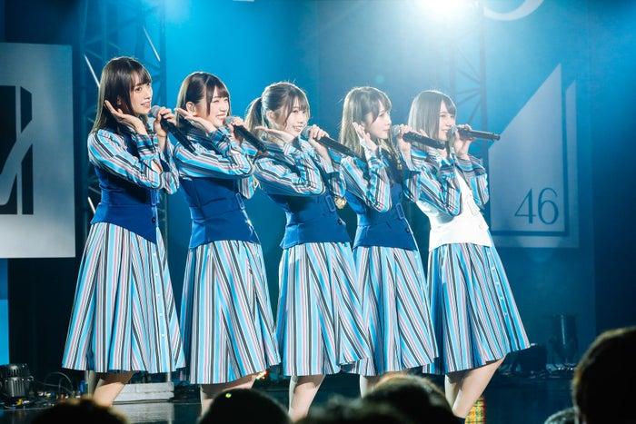 日向坂46(提供写真)