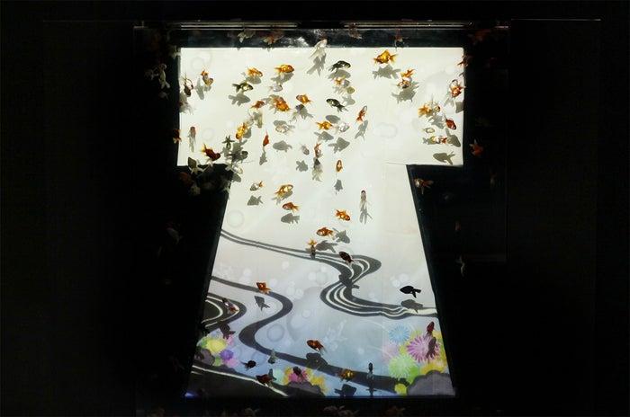 名古屋会場 展示予定作品「キモノリウム」/画像提供:エイチアイディー・インターアクティカ