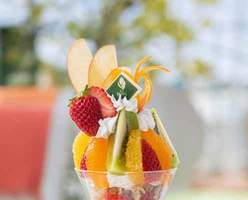 「観音山フルーツパーラー」東京・銀座に初出店、旬フルーツで作る贅沢パフェやフルーツサンド