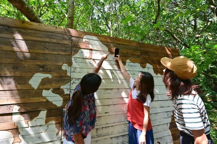ジャングル Kichi(キチ)/画像提供:星野リゾート