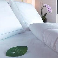本当のラグジュアリーとは贅沢に浪費することじゃない!一流ホテルのエコな取り組み4選