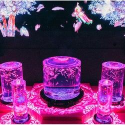 水中でお花見!?桜と金魚が豪華絢爛な春の競演、アートアクアリウム美術館で開催