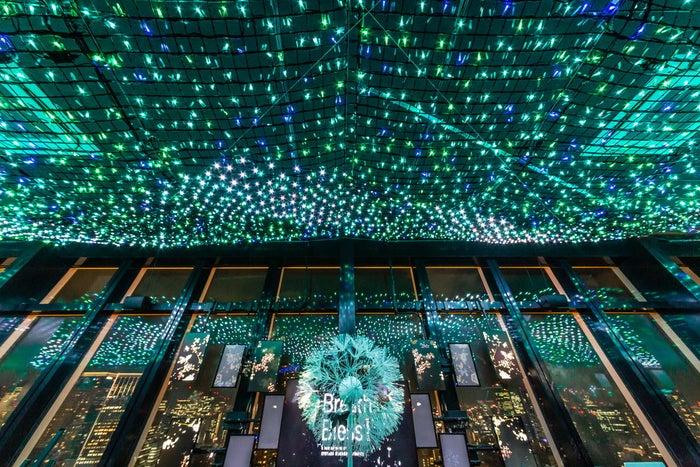 天の川イルミネーション/画像提供:東京タワー