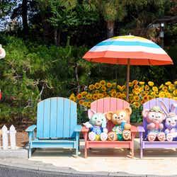 「ダッフィー&フレンズのサニーファン」 ※写真はイメージ(C)Disney