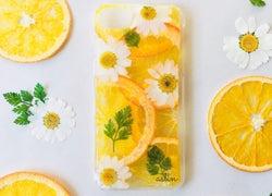 押し花ならぬ「押しフルーツ」!?ちょっぴり珍しくてかわいいスマホケース