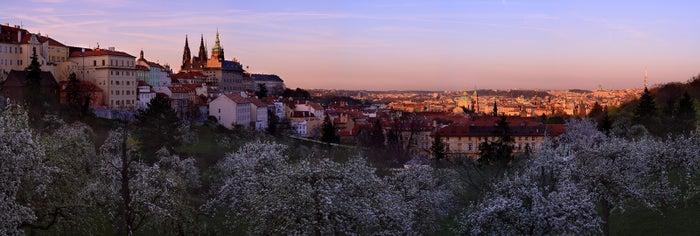 ペトシーン展望台からの風景/画像提供:チェコ政府観光局