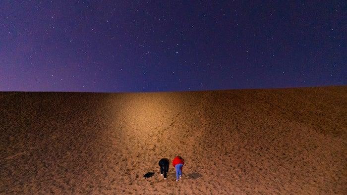 星空の下で夜の砂丘を散歩(提供写真)