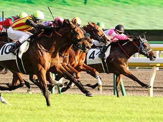 【思わず2度見】クセの強すぎる競走馬の名前ランキング