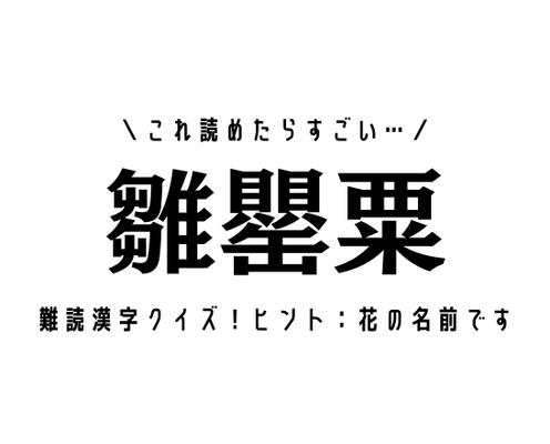 これ読めたらすごい…【雛罌粟】難読漢字クイズ!ヒント:花の名前です