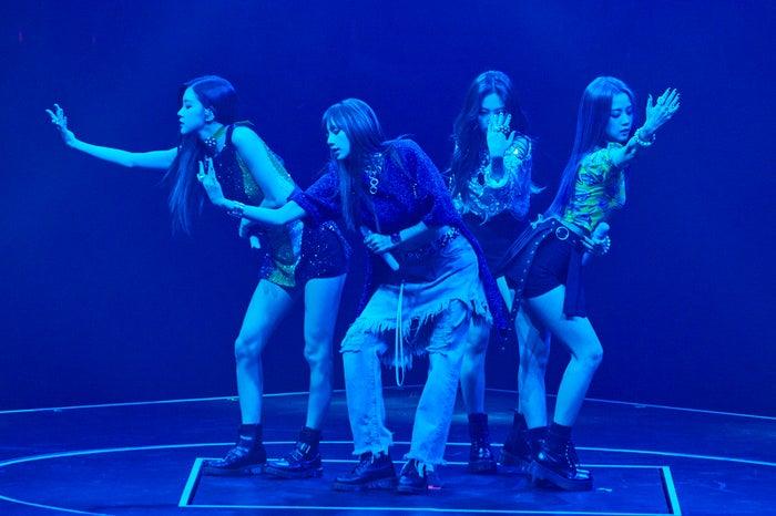 BLACKPINK(左から)ROSÉ、LISA、JENNIE、JISOO(画像提供:avex)