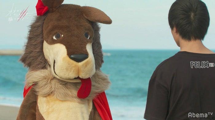 「オオカミちゃんには騙されない」最終話(C)AbemaTV