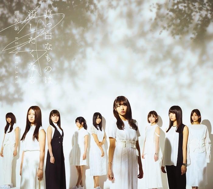 欅坂46「真っ白なものは汚したくなる」初回仕様限定盤 Type-B (提供画像)