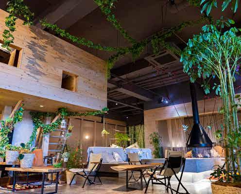 埼玉「おふろcafe ハレニワの湯」でリフレッシュ!地元野菜たっぷりごはん味わえる農園カフェも