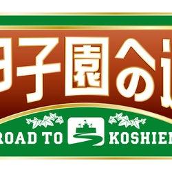 「甲子園への道」ロゴ(C)ABCテレビ