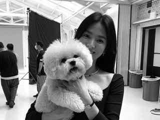 ソン・ヘギョ、本当に41歳? 愛犬と撮ったツーショットを公開