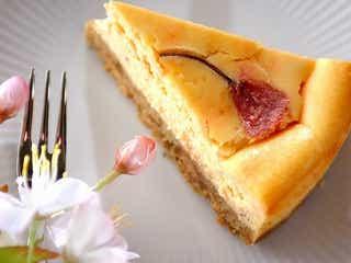 目に麗しくて美味しい!「SAKURAのチーズケーキ」レシピ