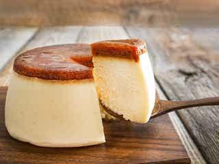 バスクチーズケーキの次はコレ!二層式やプリン風味の豪華なチーズケーキ